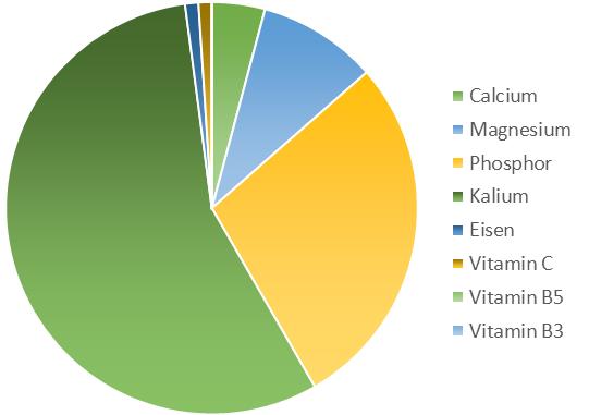 Mineralien und Vitamine Linsensprossen
